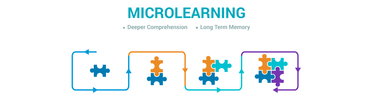 Perfect Partners: Microlearning and Higher Education